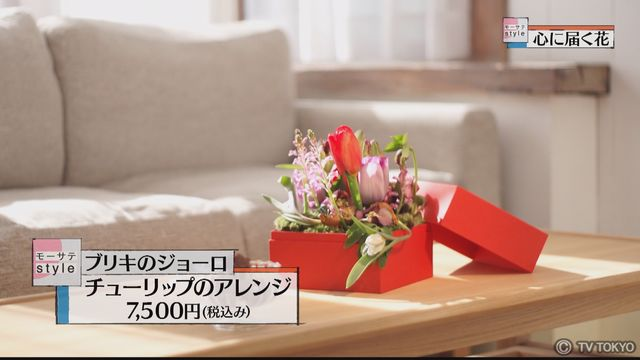【モーサテStyle】心に届く花「チューリップ」