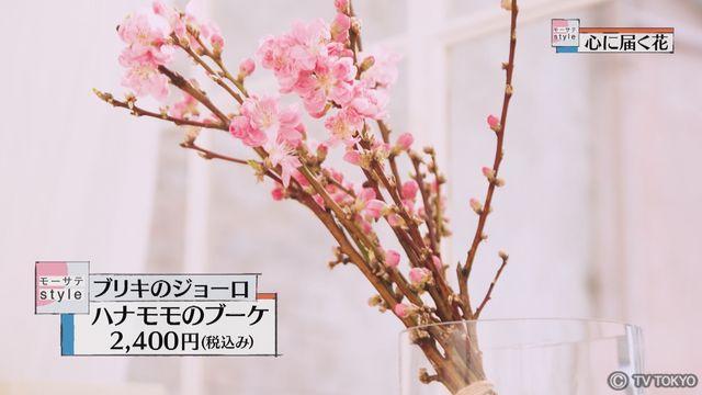 【モーサテStyle】心に届く花「ハナモモ」