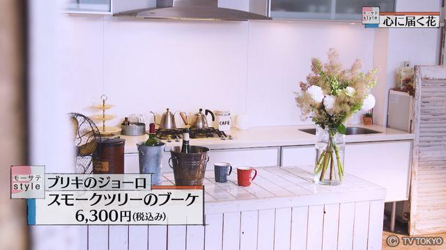【モーサテStyle】心に届く花「スモークツリー」