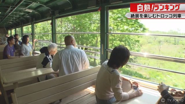 【白熱ランキング】格安で絶景を楽しむ!トロッコ列車