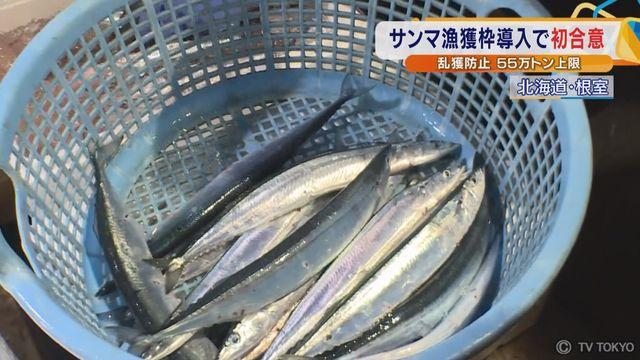 サンマ漁獲枠導入で初合意 乱獲防止 55万トン上限