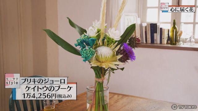 【モーサテStyle】心に届く花「ケイトウ」