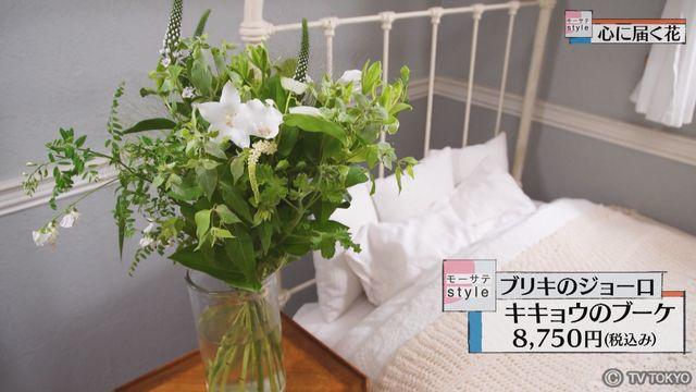 【モーサテStyle】心に届く花「キキョウ」