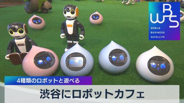 渋谷にロボットカフェ 4種類のロボットと遊べる