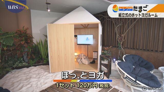 【トレたま】1人ホットヨガルーム