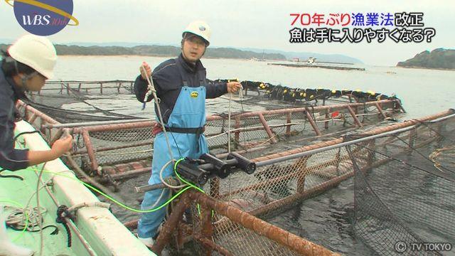 70年ぶり漁業法改正 企業の漁業参入で何が変わる?