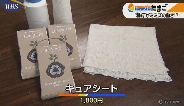 """【トレたま】""""和紙""""の力で育つ植物!?"""