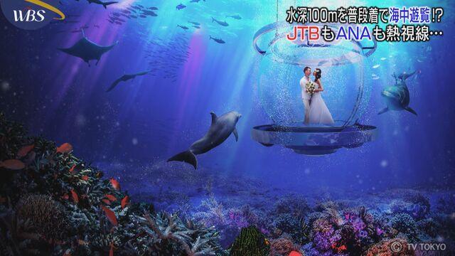 "33474382ed 2021年海中の旅 ""未知との遭遇""に商機"