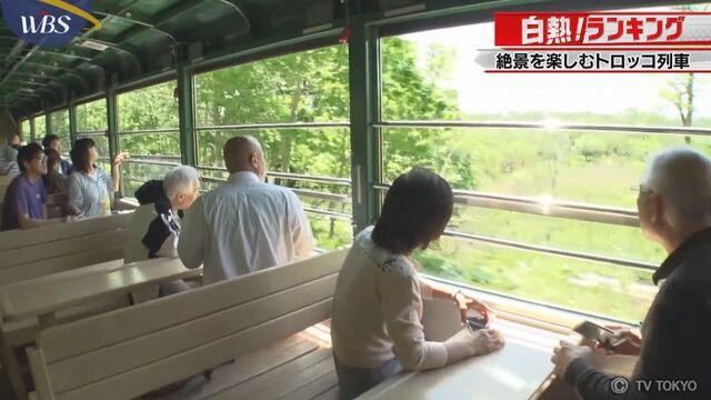【白熱!ランキング】格安で絶景を楽しむ!トロッコ列車