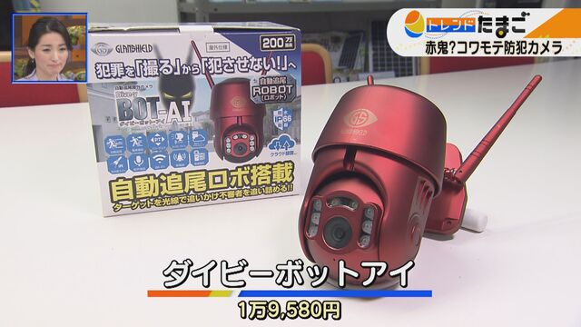 【トレたま】コワモテ防犯カメラ