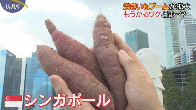 日本政府も… 焼きいもに熱い期待!?