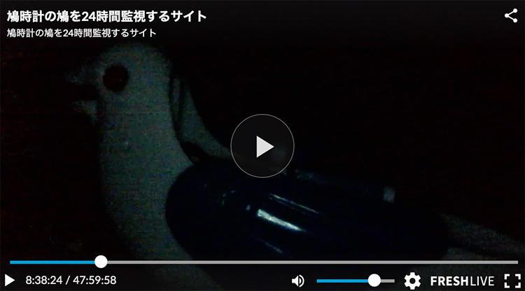 teraokasan_20190227_01.jpg