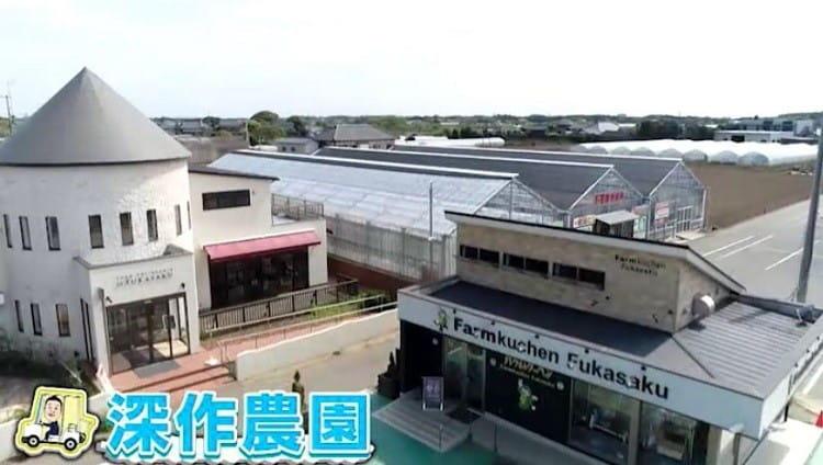 zakiyama_tabi_20190531_13.jpg