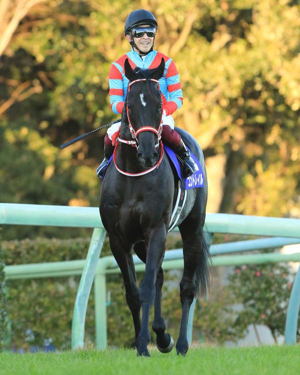【日本ダービー】コントレイル466kg、サリオス534kg 調教後の馬体重