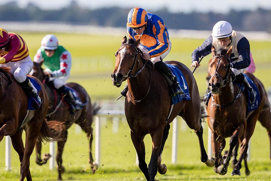 【エリザベス女王杯】ディープ産駒の海外G1馬ファンシーブルー、英オークス9馬身圧勝のラブなど 海外予備登録馬