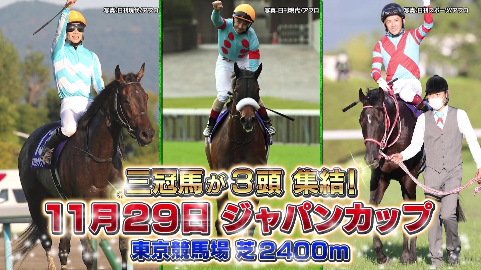 【ジャパンC】三冠馬3馬の歴史的一戦 日本競馬史上最高の150秒を見逃すな!
