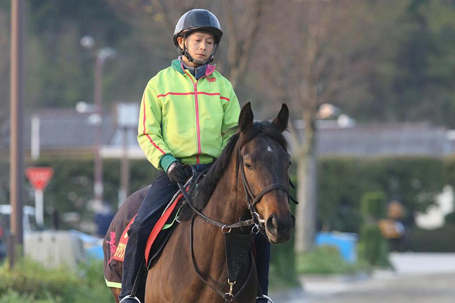 【香港QE2C】デアリングタクト 松山弘平「今日は馬なりで、リズムを重視」