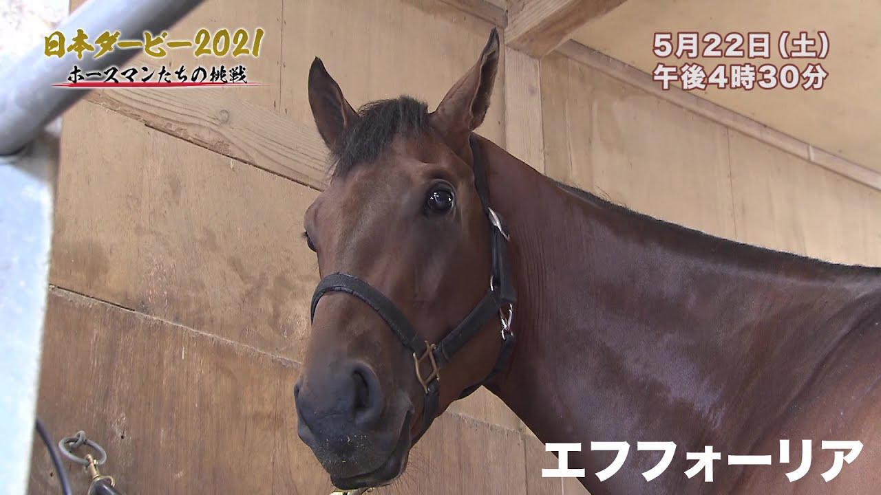 無敗の二冠を目指す『エフフォーリア』厩舎でしか見せない素顔