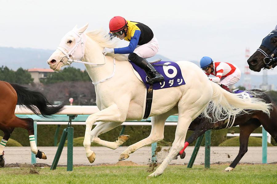 【秋華賞】桜花賞馬・ソダシは2枠4番、オークス馬・ユーバーレーベン6枠11番 枠順確定