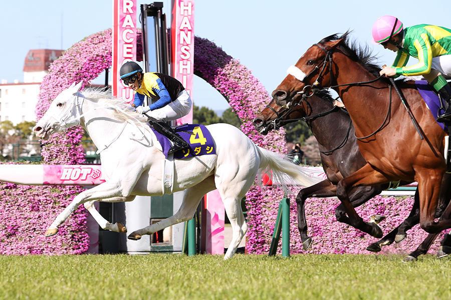 【秋華賞】ソダシは吉田隼人、ユーバーレーベン M.デムーロ。出走馬16頭&騎手確定