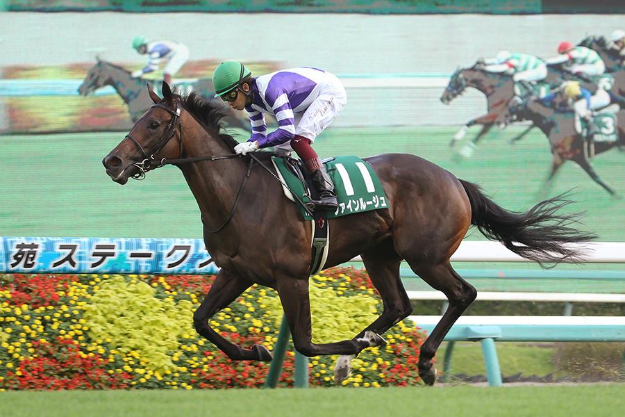 【秋華賞】ファインルージュ501kg、ソダシ478kg 調教後の馬体重
