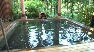 奥多摩 温泉 もえぎ の 湯