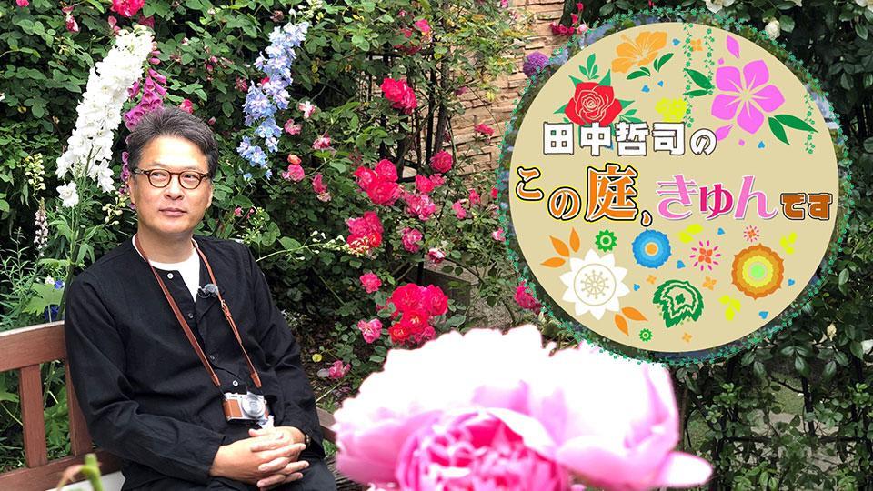 BSテレ東 6月22日(火)夜6時54分放送!「田中哲司のこの庭、きゅんです~バラ満開!伊豆高原VS東京1000坪~」